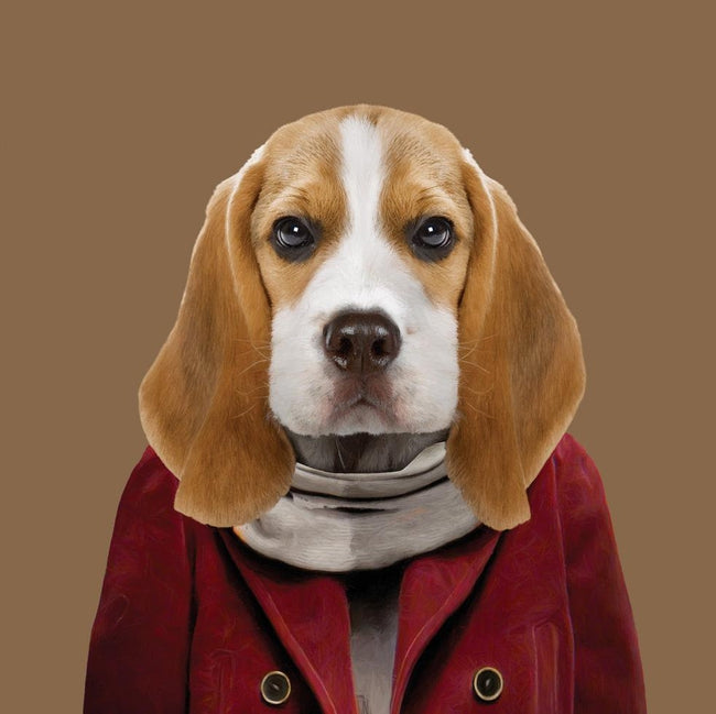 Yago Partal Aaron, the Beagle - Evermade