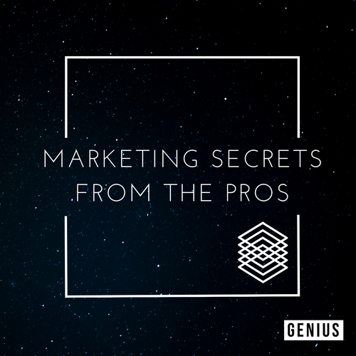 Marketing Secrets Pros (Free Training Video)