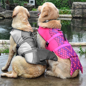 Adorable Dog Life Jacket
