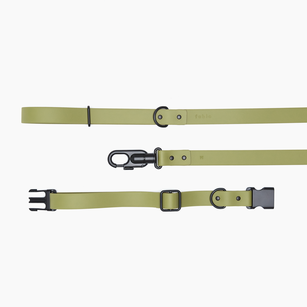 Signature Leash+Collar Set