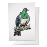 Kereru/ Wood Pigeon Bird Print
