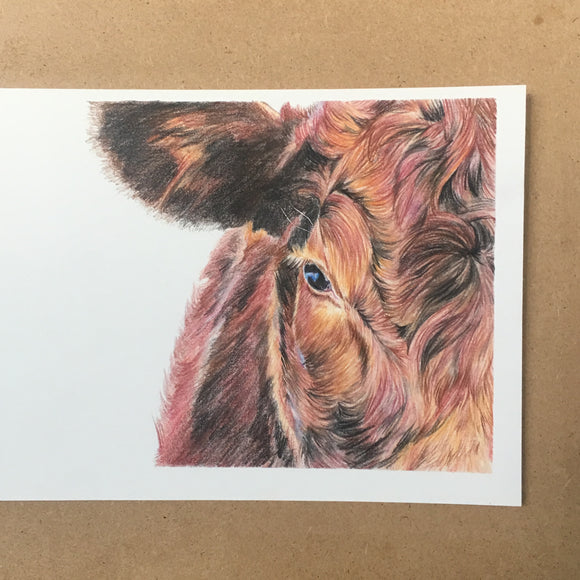 Mini Original Cow - A5