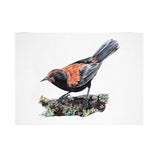 Saddleback Bird Print