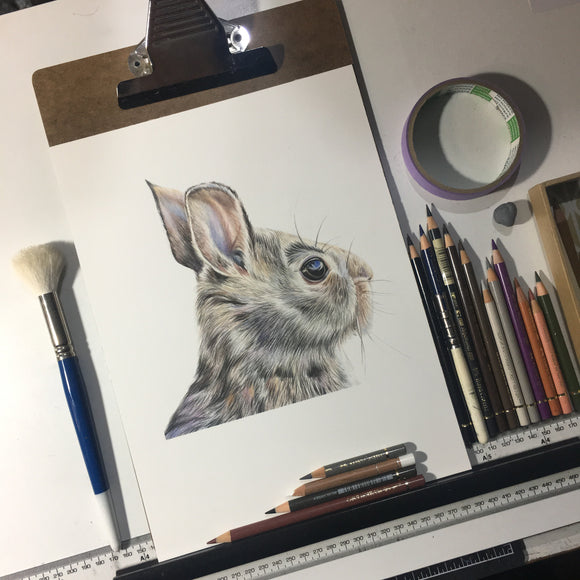 ORIGINAL Rabbit Drawing