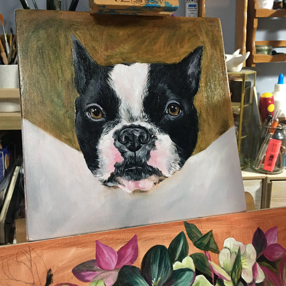 PET PORTRAIT Commission - Oils