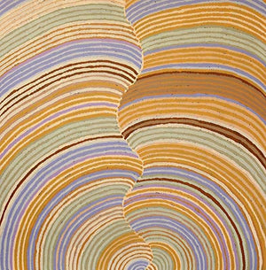 Aboriginal art work by Abie Loy - Boomerang Art - Abie Loy Kemarre - #product _type#