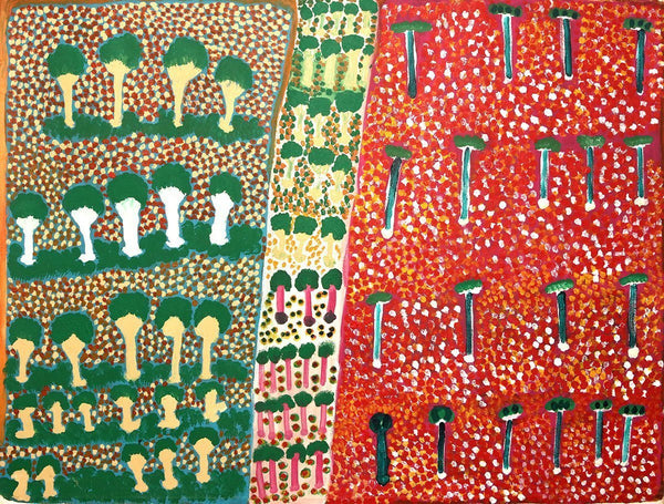 Warnti - Big WarlaOriginal Aboriginal ArtPenny K-Lyons and Rosie Tarku KingBoomerang Art