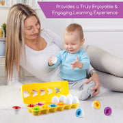 Play Brainy™ Shape and Color Matching Eggs –Educational STEM Toy for Toddlers and Preschoolers –