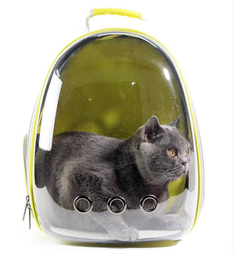 Cat Carrier Transparent Backpack - backpackboutique.store
