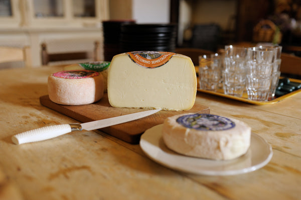 A cheese from the Potentino Flock