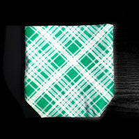 Green and white , plaid project bag, Knitting Project Bag