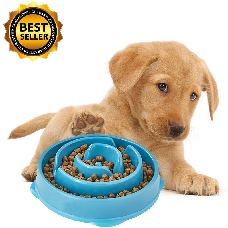 Why are slow feeding dog bowls so effective?