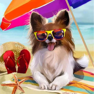 10 Summer Safety Tips for your Dog