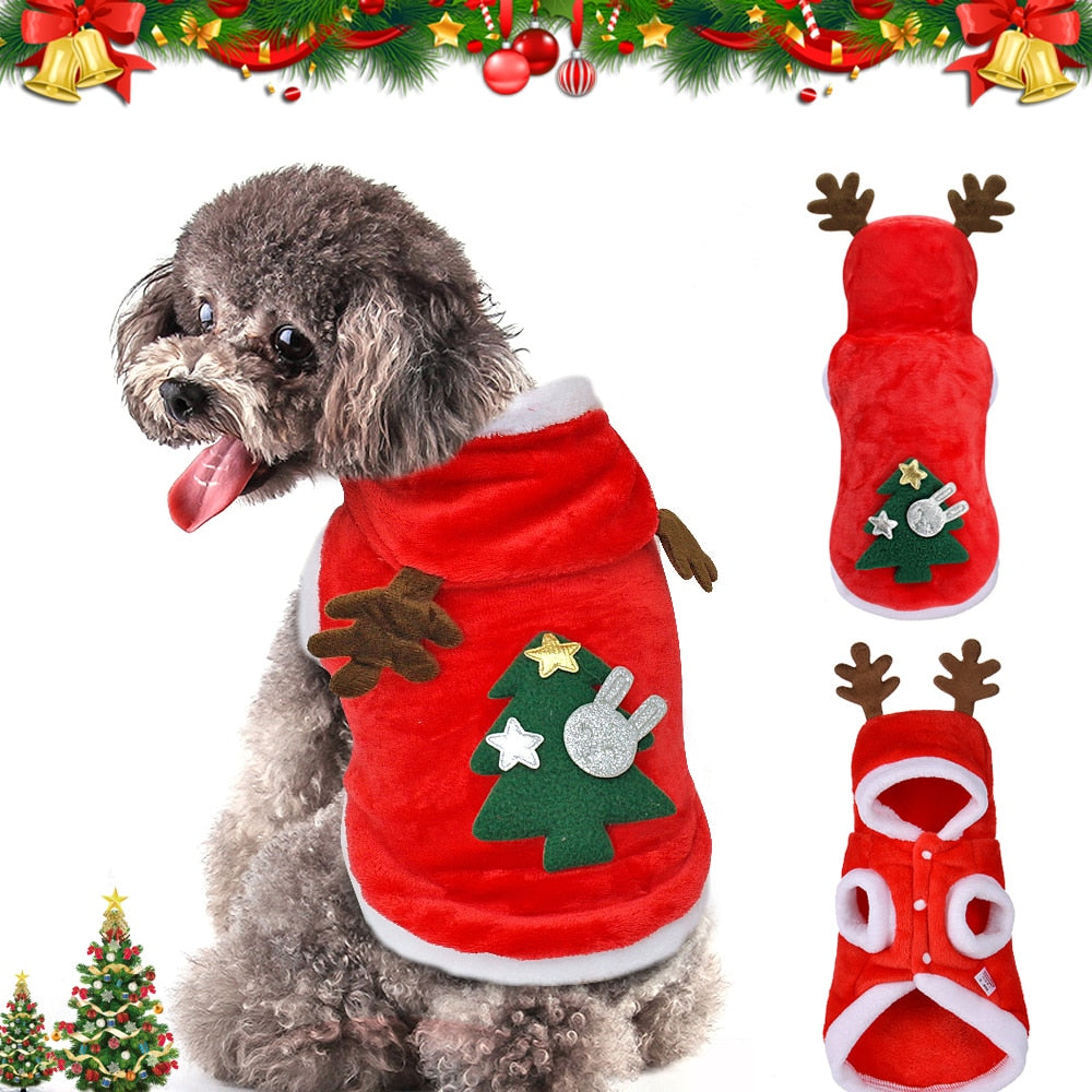 Cute Santa Costume for small dogs