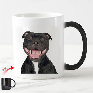 The Laughing Staffie - petilly.com