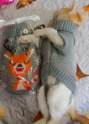 Sweater for Cats And Small Dogs - petilly.com