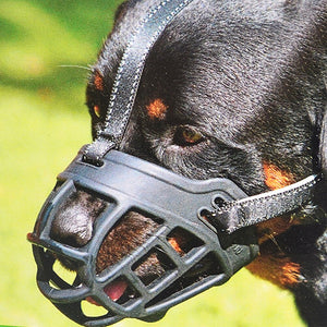 Silicone Dog Muzzle - petilly.com