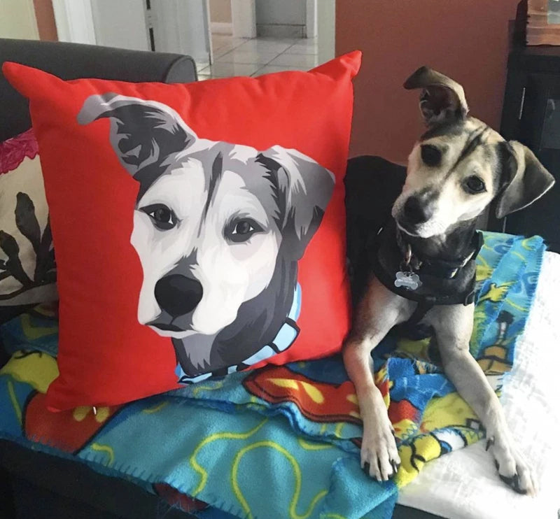 Custom Square Pillow