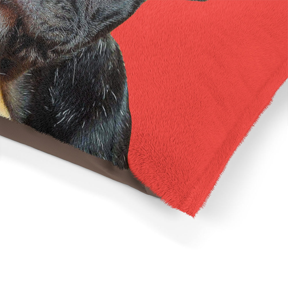 Pet Bed - Pop Art - petilly.com
