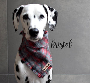 BRISTOL Fringed Flannel Dog Bandana - Snap/Tie On Cotton Scarf