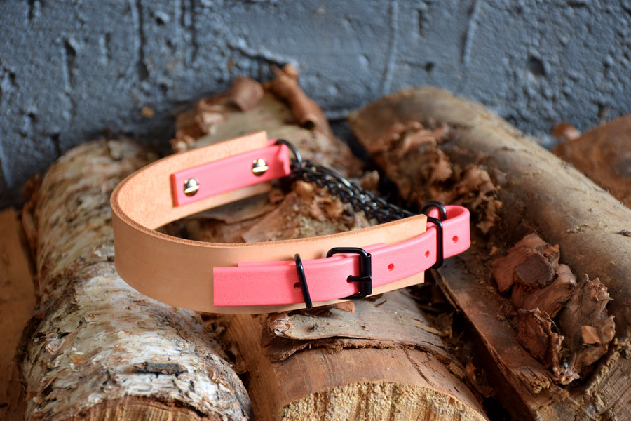 PREMADE COLLECTION - Natural Tan & Coral, Limited Edition Biothane and Leather Combo Martingale Dog Collar
