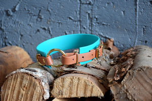 PREMADE COLLECTION - Teal & Tan with Brass, Osgiliath Biothane Dog Collar