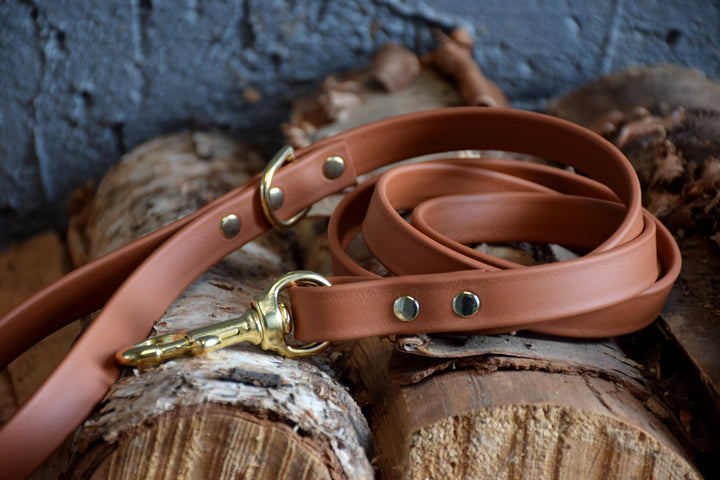 PREMADE COLLECTION - Tan & Brass Biothane Dog Leash
