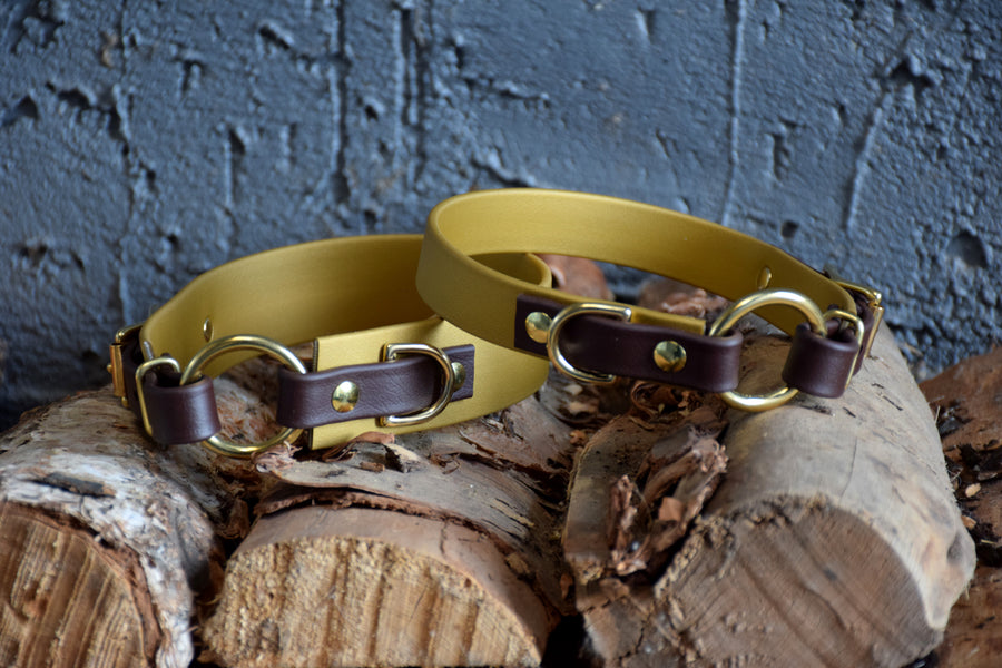 PREMADE COLLECTION - Gold & Chocolate with Brass, Osgiliath Biothane Dog Collar