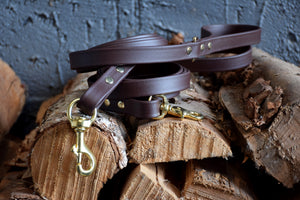 PREMADE COLLECTION - Chocolate & Brass Biothane Dog Leash