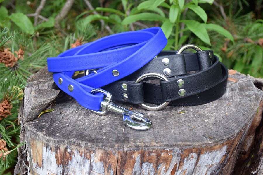 Waist Leash - Hands Free Convertible Biothane Leash Set