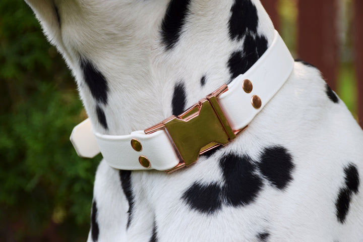 Design Your Own - The Elessar QR BT Collar, Biothane & Rose Gold Dog Collar