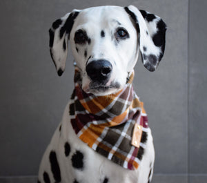 CIDER HOUSE Fringed Flannel Dog Bandana - Snap/Tie On Cotton Scarf