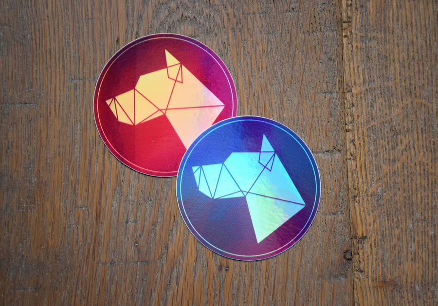Rainbow Holographic DDG - Weatherproof Die Cut Sticker