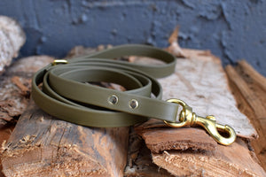 PREMADE COLLECTION - Olive & Brass Biothane Dog Leash