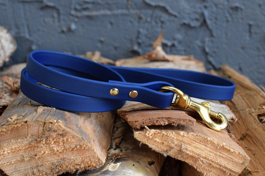 PREMADE COLLECTION - Navy & Brass Biothane Dog Leash