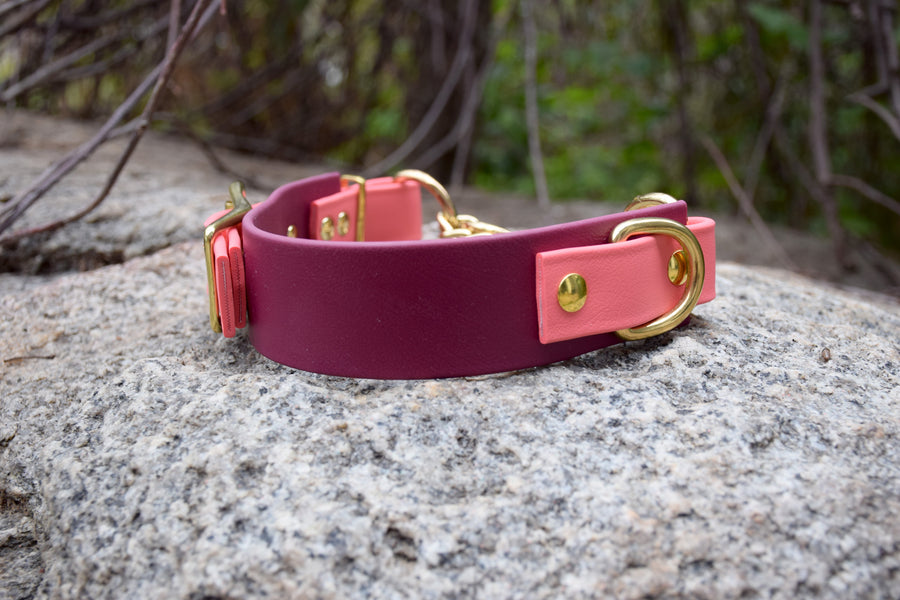 Design Your Own - The Hornburg BT Collar, Adjustable Heavy Duty Wide Biothane Martingale Dog Collar