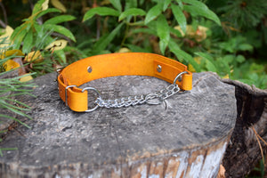 The Anduril Collar: Yellow Adjustable Leather Martingale Dog Collar