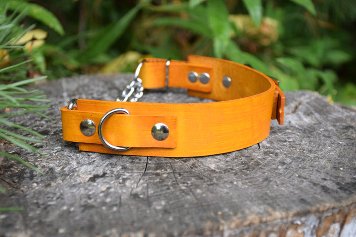 The Anduril Collar: Sunshine Gold Adjustable Leather Martingale Dog Collar