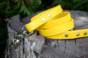 Design Your Own - Biothane & Nickel Leash