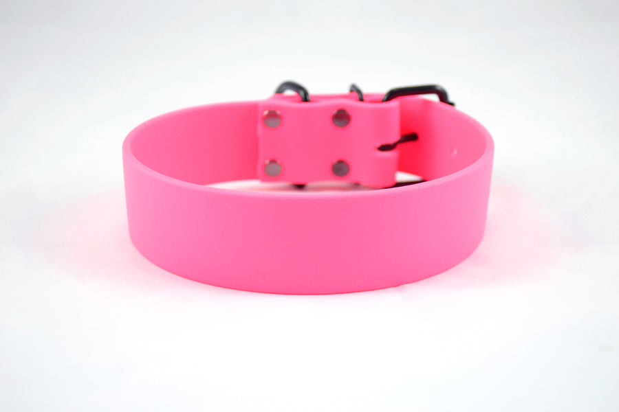 Design Your Own - The Undomiel BT Collar, Wide Biothane Dog Collar