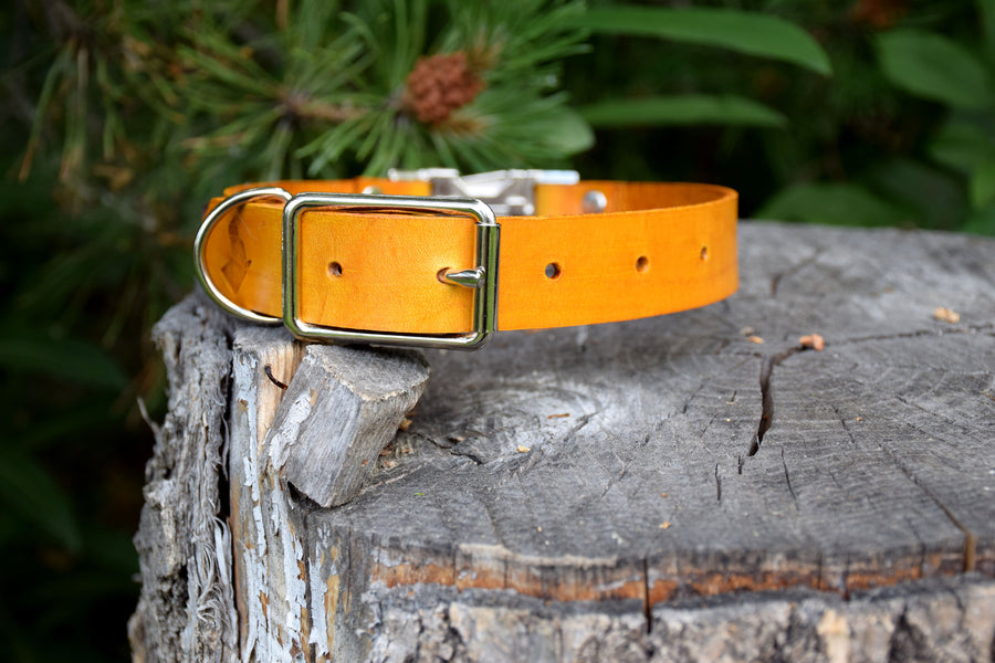 Design Your Own - The Shire QR Collar, Quick Release Leather Dog Collar