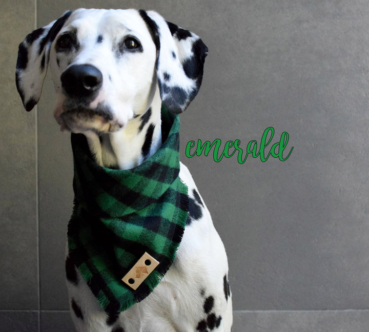 EMERALD Fringed Flannel Dog Bandana - Snap/Tie On Cotton Scarf
