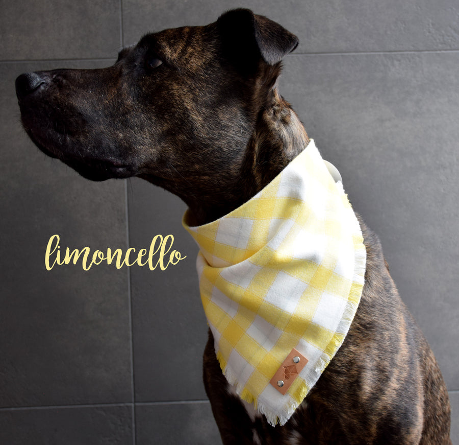 LIMONCELLO Fringed Flannel Dog Bandana - Snap/Tie On Cotton Scarf