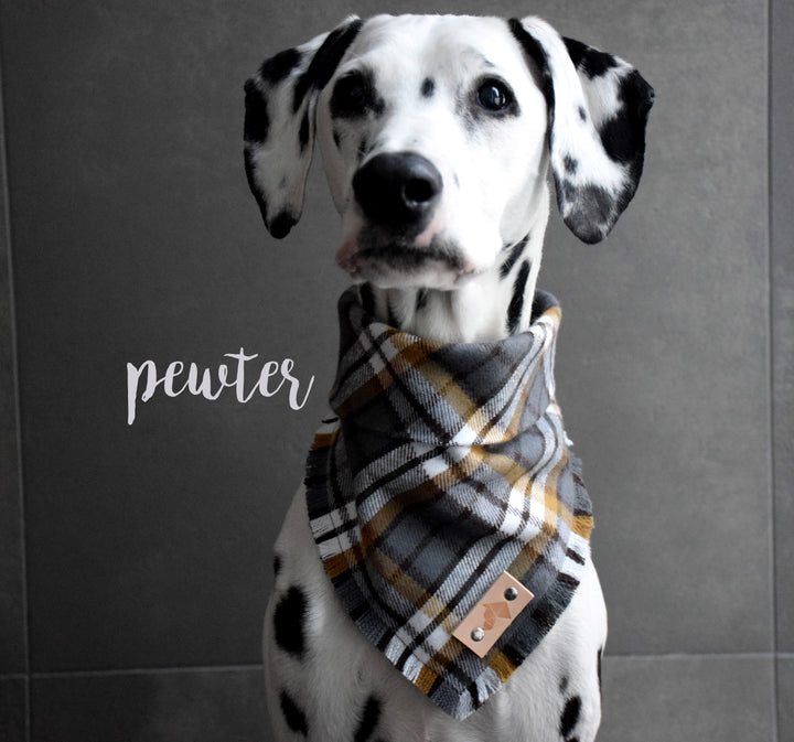 PEWTER Fringed Flannel Dog Bandana - Snap/Tie On Cotton Scarf