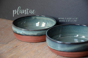 DDG Nourish Stoneware Collection: PLANTAE, Large Bowl Set