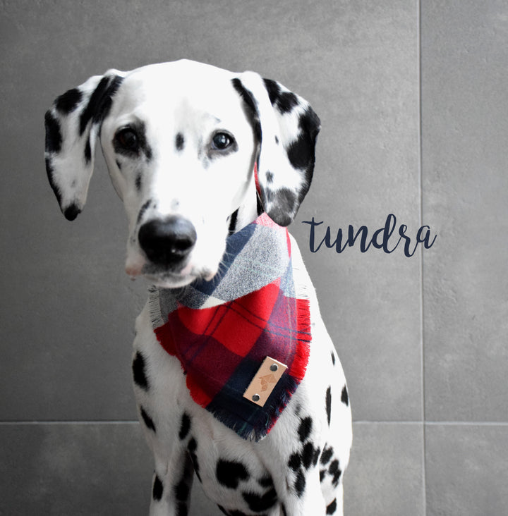 TUNDRA Fringed Flannel Dog Bandana - Snap/Tie On Cotton Scarf