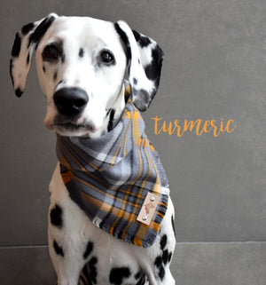TURMERIC Fringed Flannel Dog Bandana - Snap/Tie On Cotton Scarf
