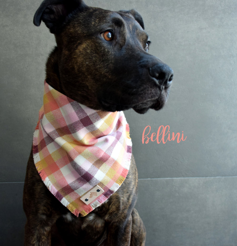 BELLINI Fringed Flannel Dog Bandana - Snap/Tie On Cotton Scarf
