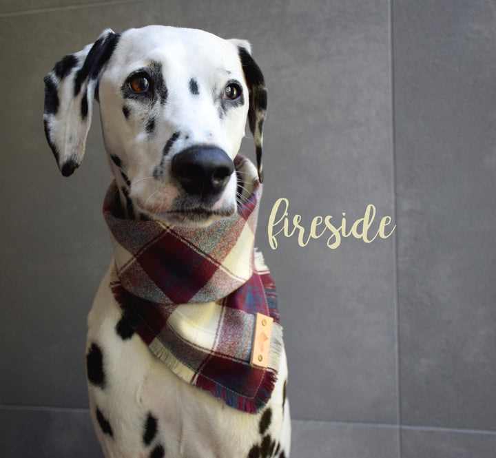 FIRESIDE Fringed Flannel Dog Bandana - Snap/Tie On Cotton Scarf