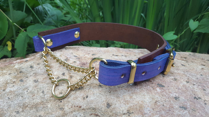 The Rohirrim Collar: Timber & Purple Adjustable Leather Martingale Dog Collar